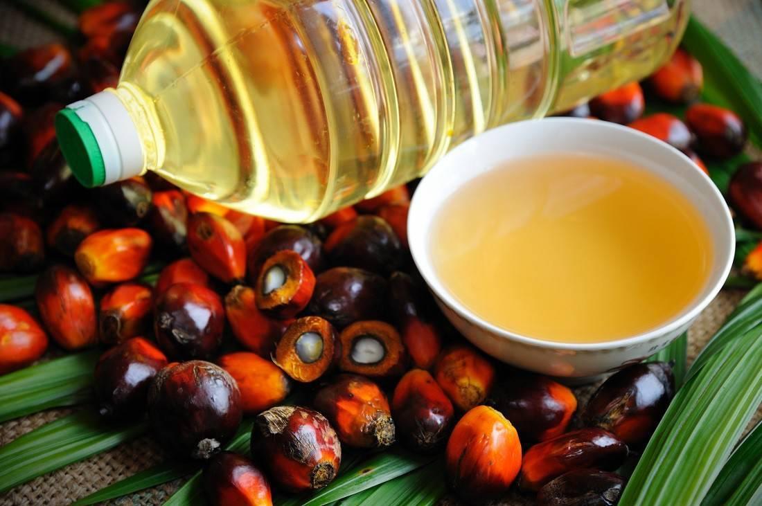 пальмовое масло в шоколаде